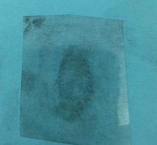 Fingerprinting Blog