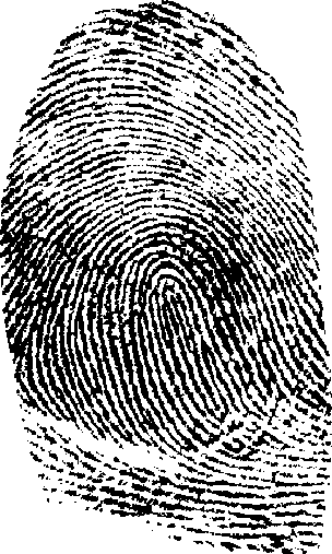 Fingerprinting and the Shirley McKie case study