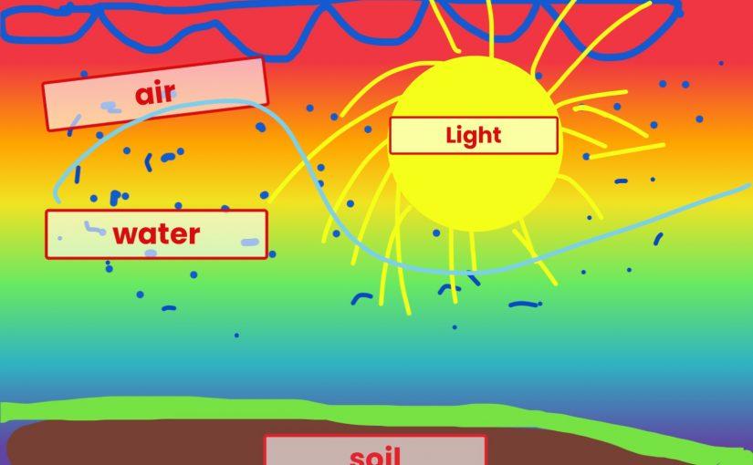 Air, Water, Light, & Soil